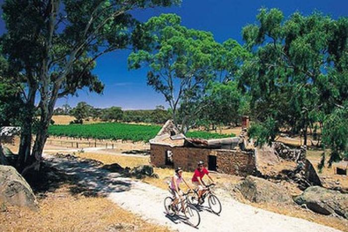 Clare Valley Winery Tours