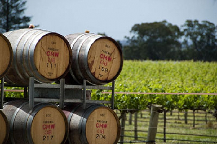 Barossa Valley Winery Tours